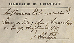 Herbier Chateau